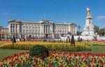 Royals postpone engagements due to Coronavirus (art.English/Italian)