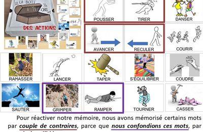 La boîte à trésors des actions (verbes), mémoire et vocabulaire n°2, MS