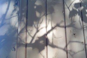 """Notes : Matthijs ENGELBERTS  """"Défis du récit scénique"""""""