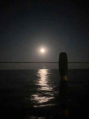 Dernière nuit de navigation avant La Rochelle et dernière soirée au resto avec les copains.