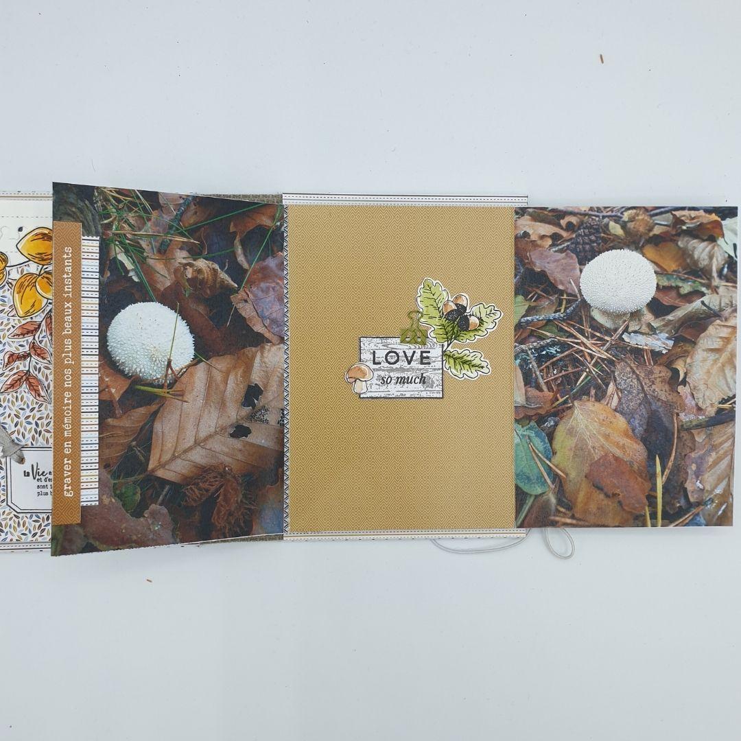 Caro : Album Carnet automnal