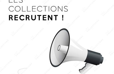 Le futur magasin Les Collections recrute
