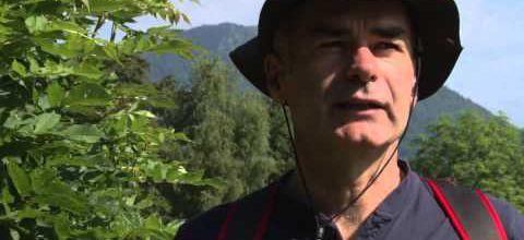"""Balade dans les monts d'Auvergne avec """"La Montagne"""""""