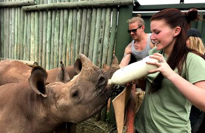 Care for wild rhino orphanage/ L'orphelinat de rhinocéros Care for wild
