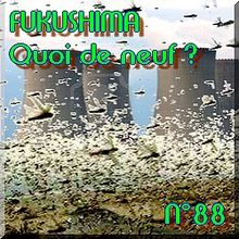 FUKUSHIMA - 21 juin 2011 - Quoi de neuf N°88 - Actualités nucléaires Cooper NPP - NATURE(S)