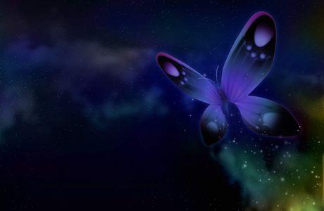Anniversaire d'un papillon