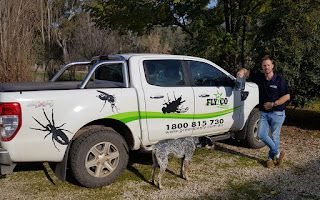 Understand the Importance of Pet Safe Pest Control Services