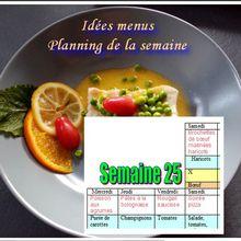 Menus de la semaine 25 (idées repas, planning)