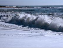 Promenade hivernale en bord de mer