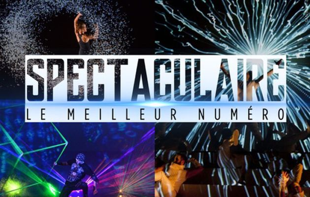 Spectaculaire, le nouveau talent show de France 2 ! #Spectaculaire