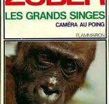 """Christian Zuber/ """"Caméra au poing"""" : Les éléphants... etc + évocation de l'auteur Louise de Vilmorin (de la famille des fameux grainetiers, quai de la Mégisserie à Paris) dont les parcours se sont croisés"""