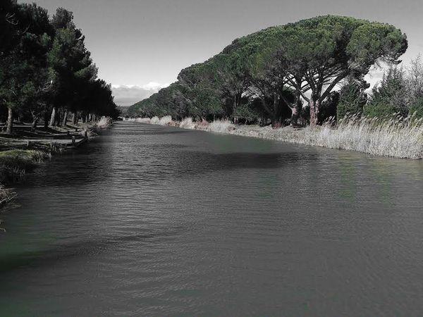 Sur les bords du canal...