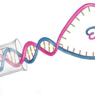 D'une prétendue génétique de l'amour