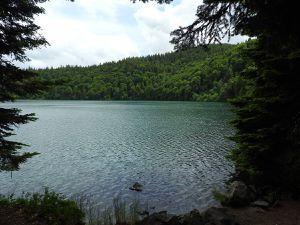 Le lac Pavin ; marche autour du lac en sous bois ; magnifiques reflets.