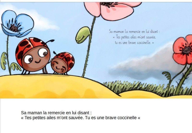 Albums Accessibles: La coccinelle aux petites ailes...