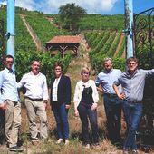 Les Vignobles Ruhlmann-Schutz : Créateurs de Vins