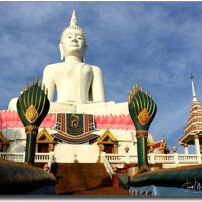 Promenade matinale (Thaïlande)