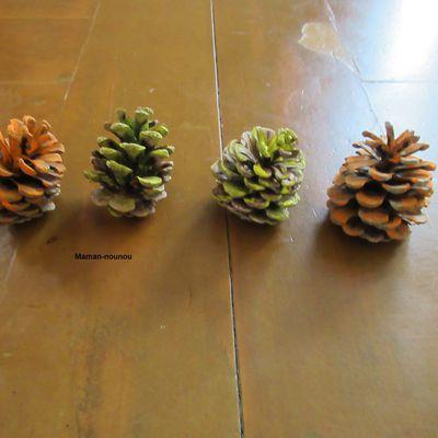 Peinture sur pommes de pin