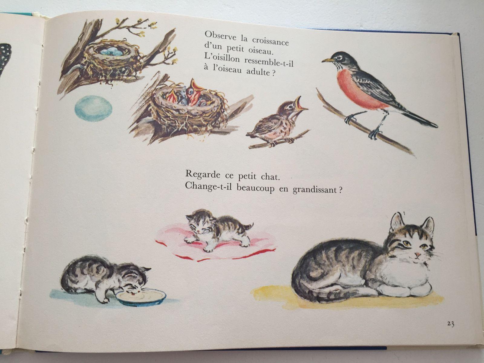 je découvre les animaux  livre vintage la presse d'or, joie d'apprendre. sur charlotteblabla blog