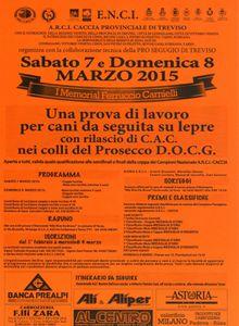 Gara Cani da seguita Provincia di Treviso