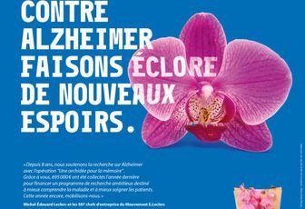 Soutenez la Recherche contre Alzheimer en achetant une orchidée chez Leclerc