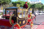 Des calèches à moteur éco-friendly pour faire le tour d'Agadir