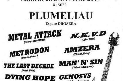 Heavy Metal Breizh #2 - Pluméliau 28 janvier 2017