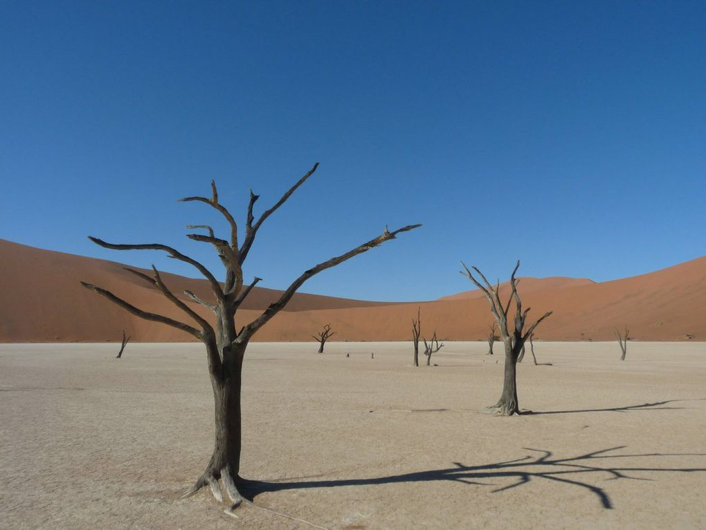 2015 - Namib-Naukluft National Park