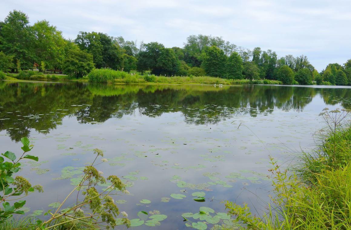 Lac de Christus, Saint-Paul-les-Dax ( Landes 40 ) AA