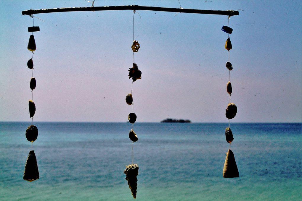 A la fin des années 90, il y avait encore un village de pêcheurs bugis sur l'île de Seraya, au large de Labuanbajo - 2 premières dias - , à l'ouest de Florès. Ils gardaient quelques cervidés - avant-dernière dia - pour leur consommation personnelle