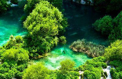 Nature - Paysage - Cascades - Arbres - Photographie - Wallpaper - Free