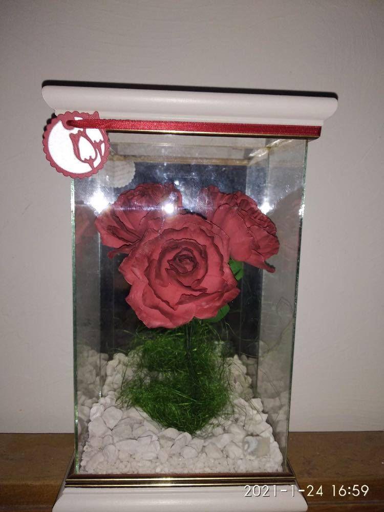 051 - Bouquet de Roses Rouges Anniversaire Patrick décembre 2020