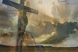MESSAGE DE NOTRE SEIGNEUR JÉSUS-CHRIST À SA FILLE BIEN-AIMÉE LUZ DE MARÍA (LUMIÈRE DE MARIE)