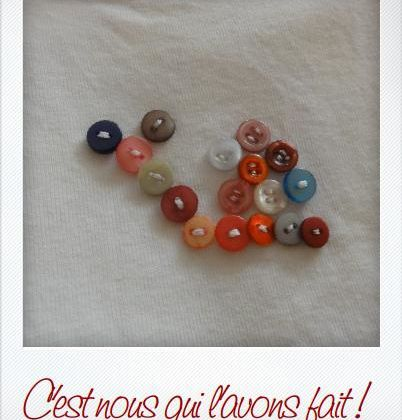 Boutons collections