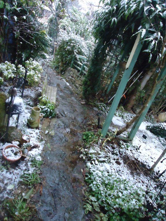 Album - neige