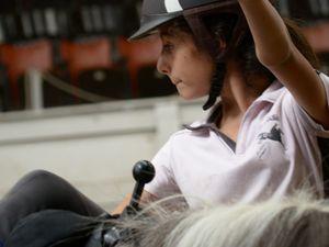 Stage Théatre Equestre Voltige (05/08-09/08)