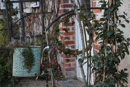 Chaleureuse rencontre jardinière en Touraine.