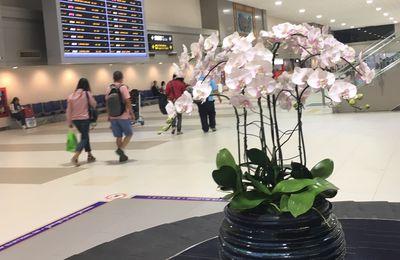 BANGKOK : retour express