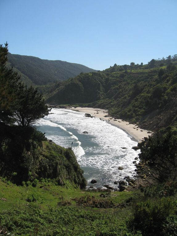 Album - CHILI - CotePacifique-ThePacificCoast