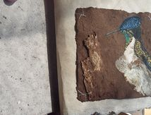 Fin des livres oiseaux sur papier d'amadouvier