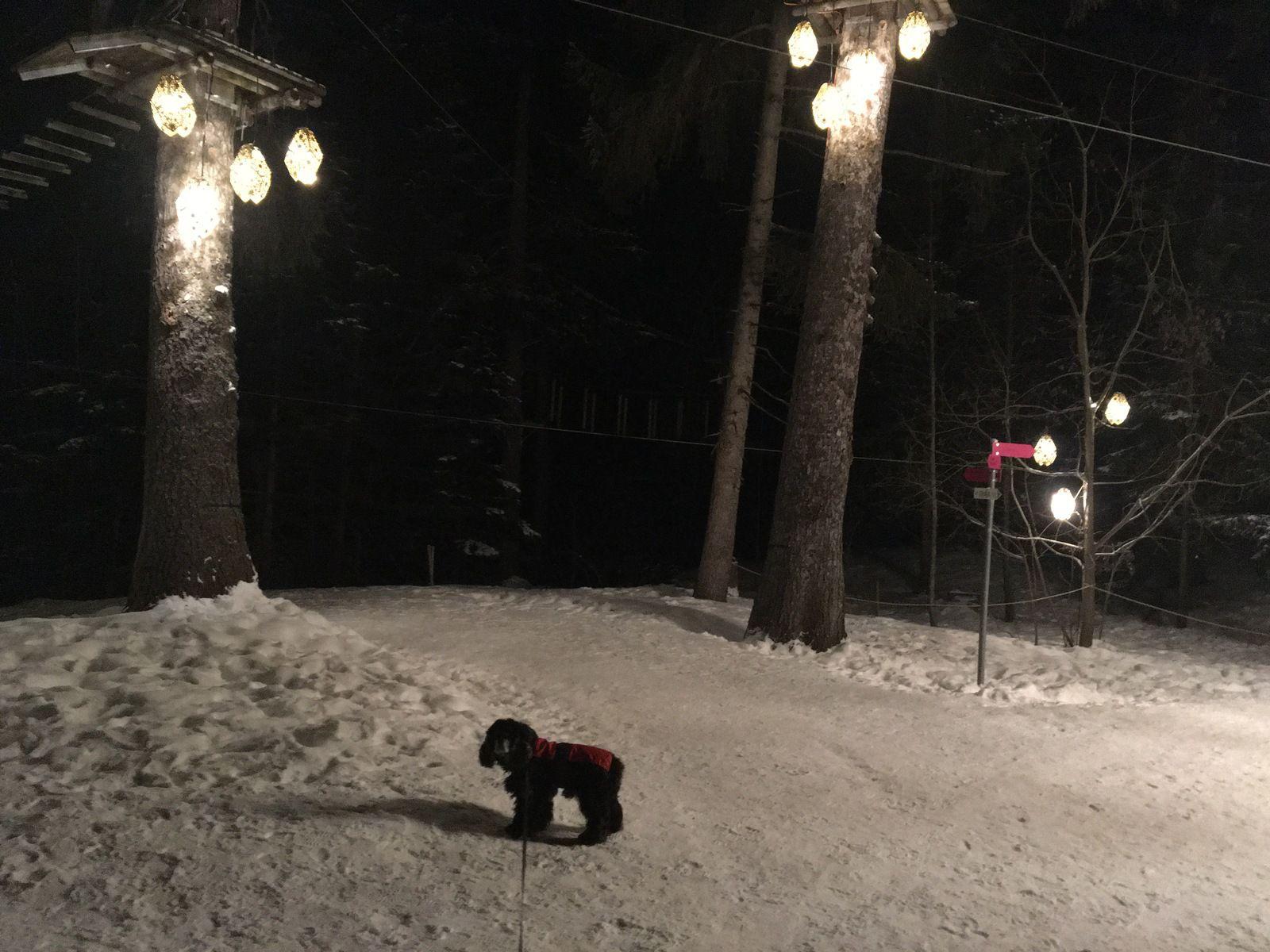 13 février 2021 : Balade hivernale sur le golf Ballesteros et sentier des lanternes à Crans-Montana, en Suisse