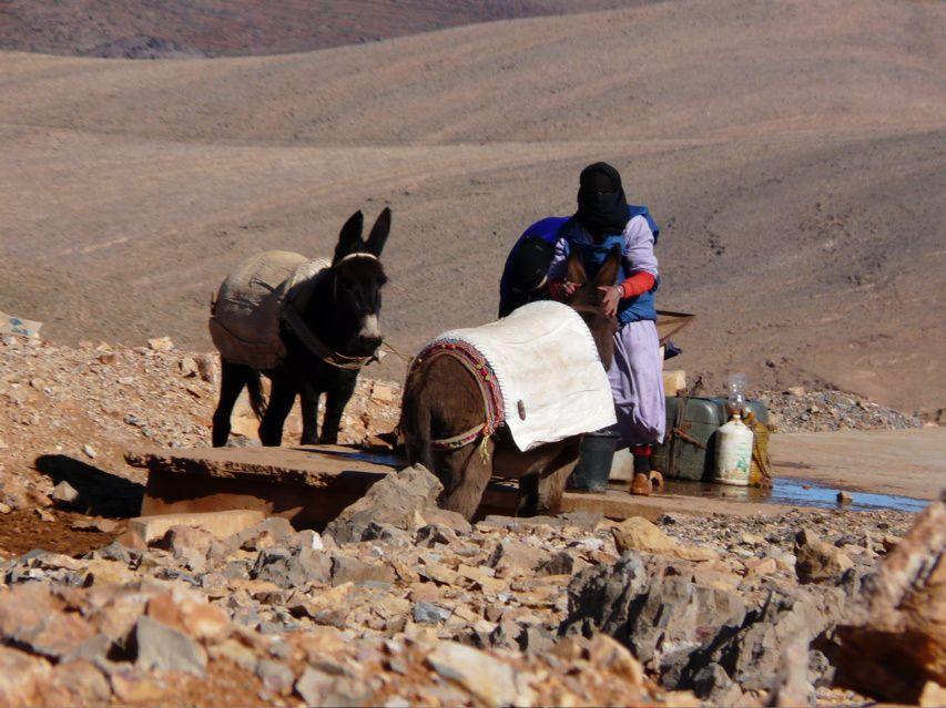 Album - Maroc-Tafraouta a Taroudant par la route du sud Janvier-2009