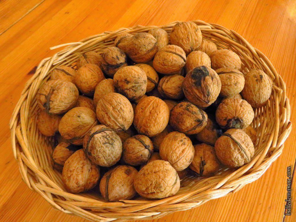 Comme les écureuils nous faisons provision de noix...