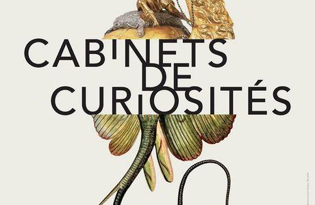 Cabinets de curiosités : visite de l'exposition au FHEL à Landerneau
