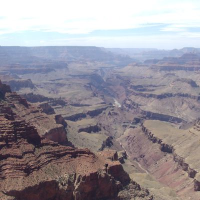 Grand Canyon et Petrified Forest