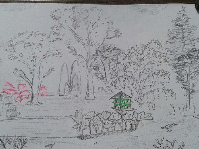 """""""Croquis d'Extérieur"""" au  Jardin des plantes de Nantes."""