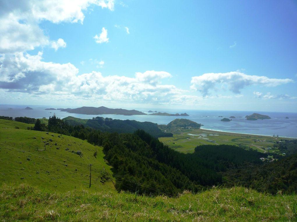 Album - New-Zealand-1