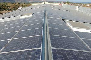 Un chantier Nettoyage panneaux solaires à La Réunion
