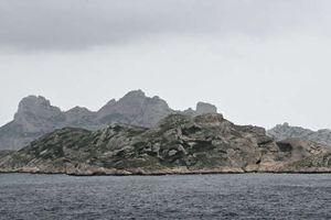 A Marseille, des braconniers condamnés à payer 385 000 euros pour préjudice écologique