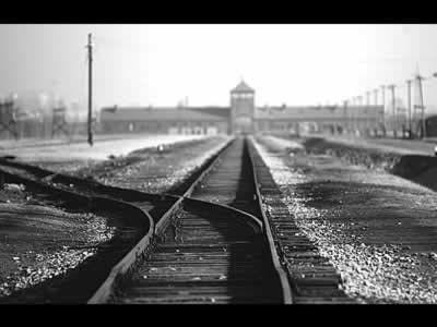 Déporté à l'age de 16 ans au camp de Buna-Monovitz, c'est-à-dire le camp d'extermination d'Auchwitz 3, Sam attendra 40 ans avant de parler...